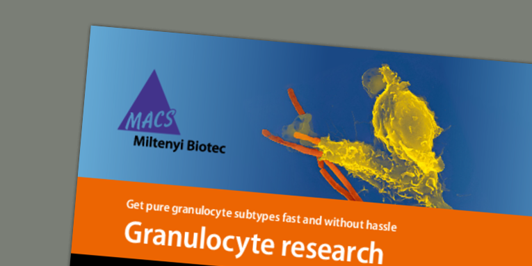 Granulocytes_Flyer_07.pdf