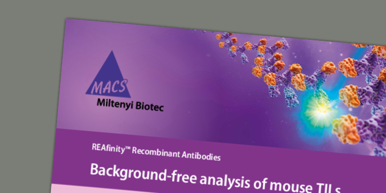 REAfinity™ Recombinant Antibodies - Background-free analysis of mouse TILs