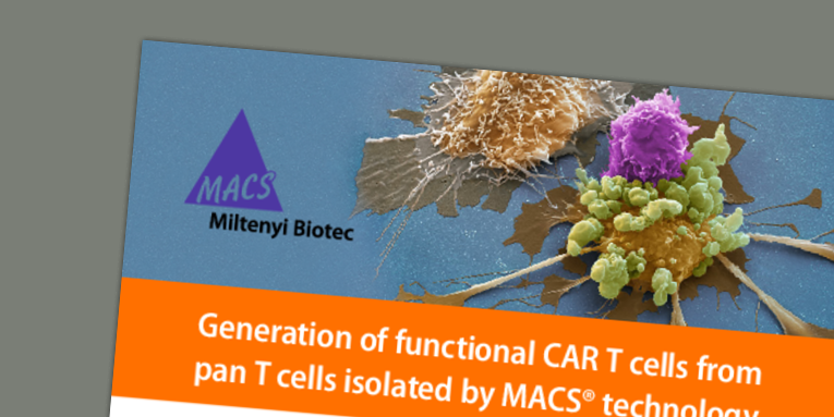 Generation of functional CAR T cells from pan T cells isolated by MACS® technology