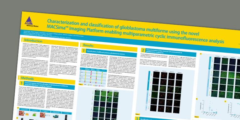 Characterization and classification of glioblastoma multiforme using the novel MACSima™ Imaging Platform enabling multiparametric cyclic immunofluorescence analysis. Reiss, S. et al. AACR (2019)
