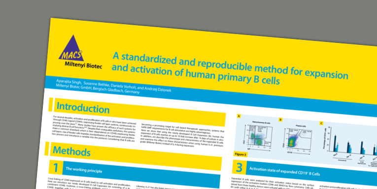 A standardized and reproducible method for expansion and activation of human primary B cells