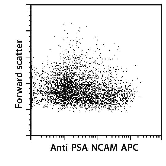 PSA-NCAM Antibody, anti-human/mouse/rat