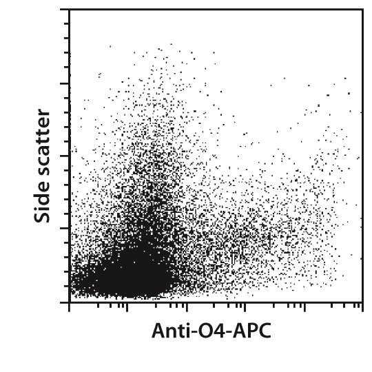 O4 Antibody, anti-human/mouse/rat