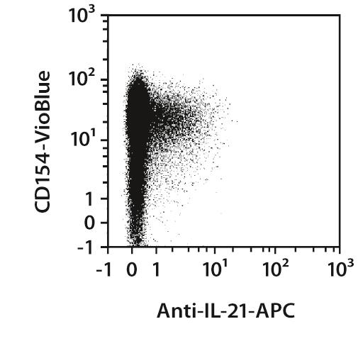 IL-21 Antibody, anti-human