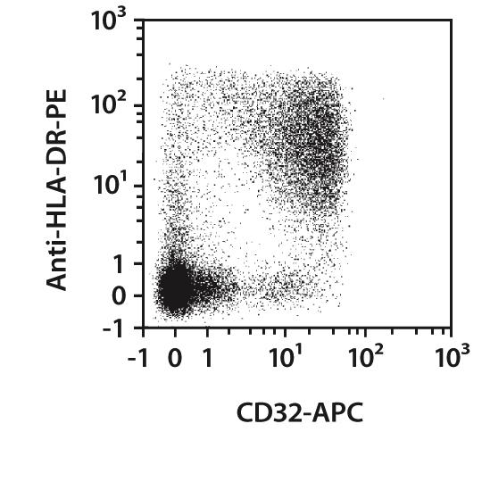 CD32 Antibody, anti-human