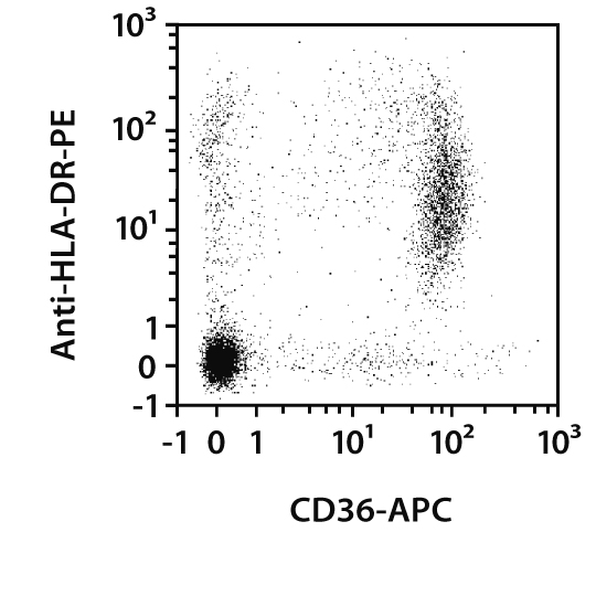 CD36 Antibody, anti-human
