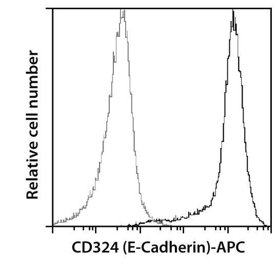 CD324 (E-Cadherin) Antibody, anti-human