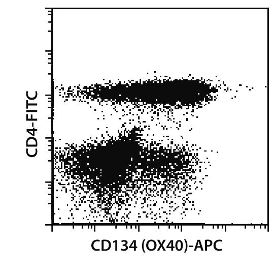 CD134 (OX40) Antibody, anti-human