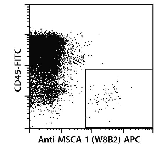 MSCA-1 Antibody, anti-human
