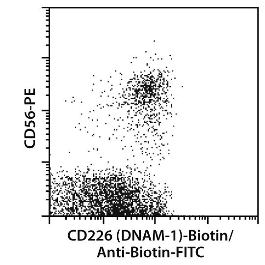CD226 (DNAM-1) Antibody, anti-human