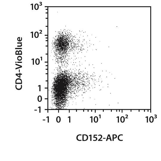 CD152 Antibody, anti-mouse