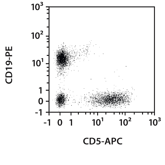 CD5 Antibody, anti-mouse