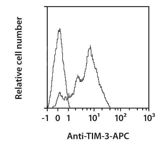 TIM-3 Antibody, anti-mouse