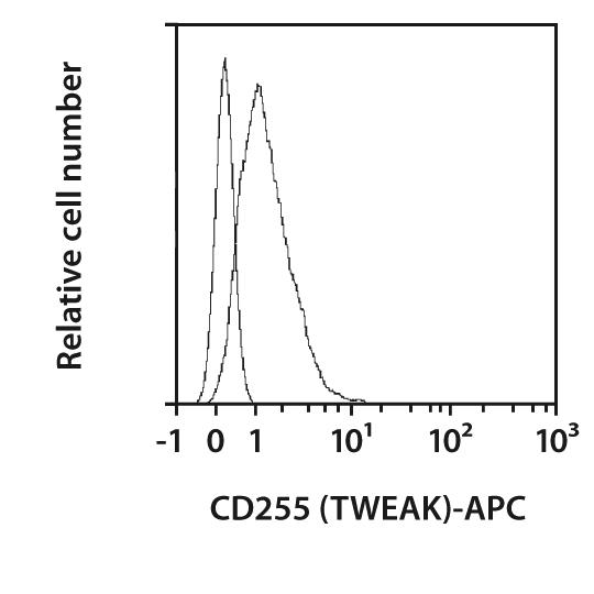 CD255 (TWEAK) Antibody, anti-mouse