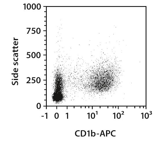 CD1b Antibody, anti-human