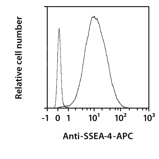 SSEA-4 Antibody, anti-human, REAfinity™