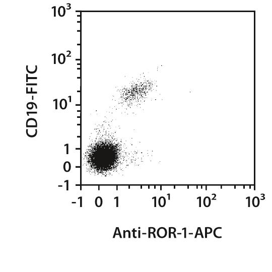 ROR1 Antibody, anti-human