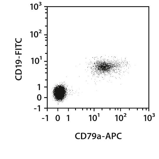 CD79a Antibody, anti-human