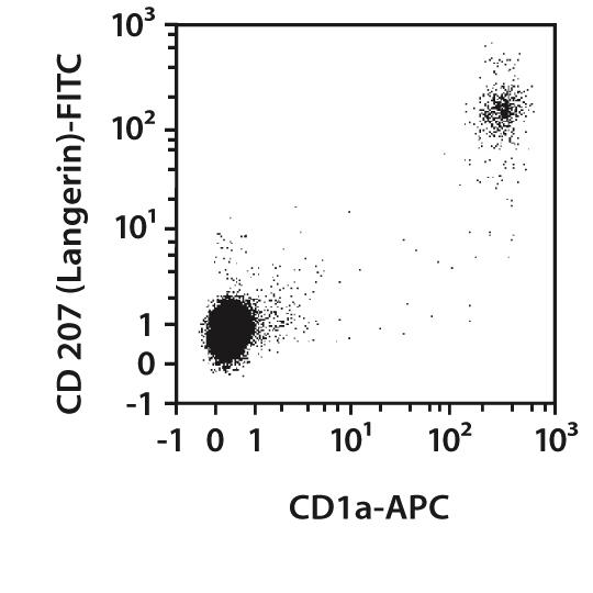 CD1a Antibody, anti-human