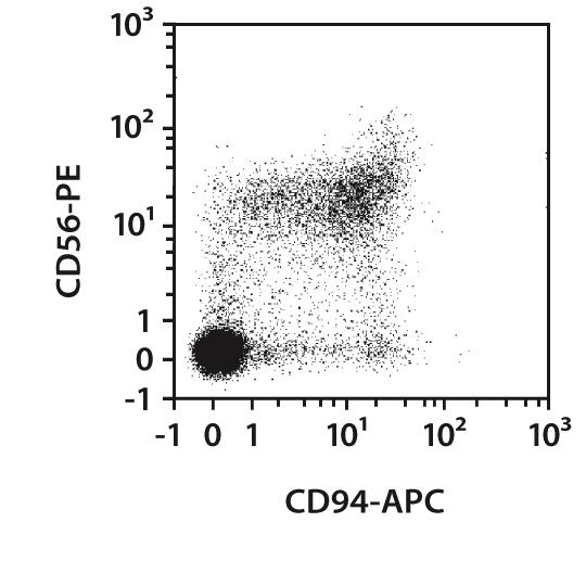 CD94 Antibody, anti-human, REAfinity™