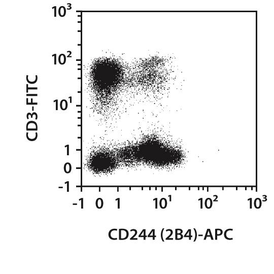 CD244 (2B4) Antibody, anti-human, REAfinity™