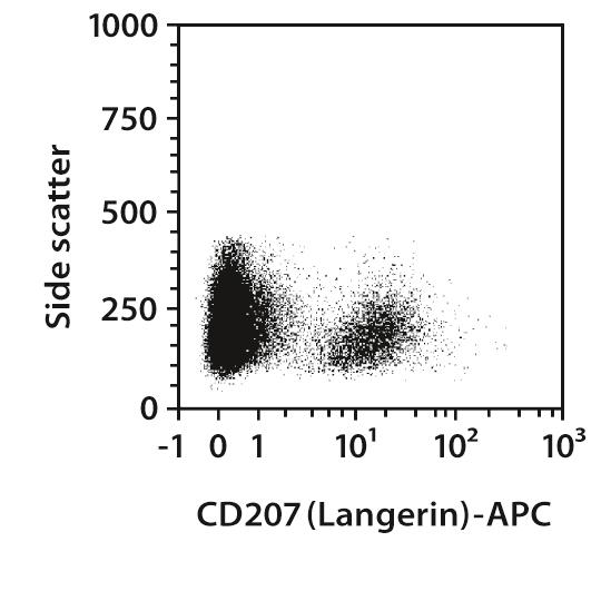 CD207 (Langerin) Antibody, anti-human