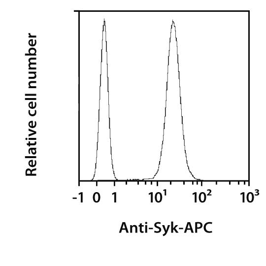 Syk Antibody, anti-human, REAfinity™