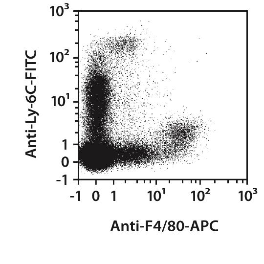 F4/80 Antibody, anti-mouse, REAfinity™
