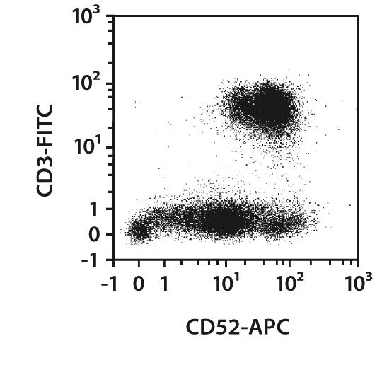 CD52 Antibody, anti-human, REAfinity™