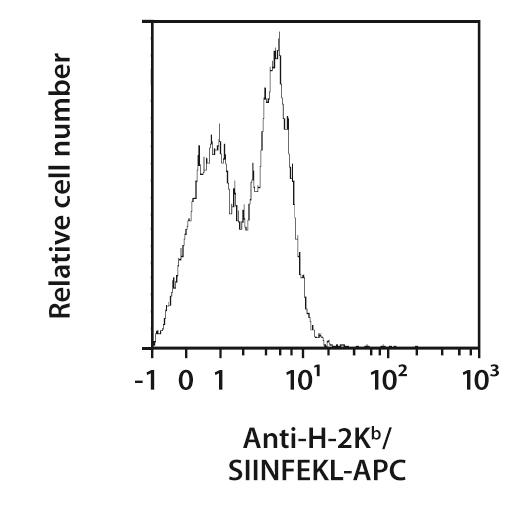H-2Kb/SIINFEKL Antibody, anti-mouse