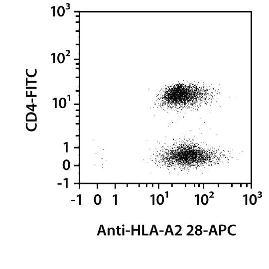HLA-A2, A28 Antibody, anti-human, REAfinity™