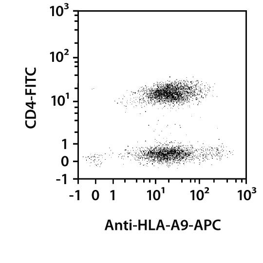 HLA-A9 Antibody, anti-human, REAfinity™