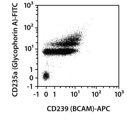 CD239 (BCAM) Antibody, anti-human, REAfinity™