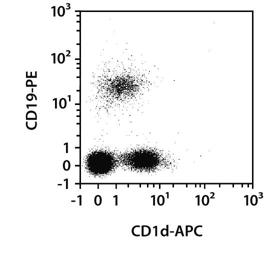 CD1d Antibody, anti-human