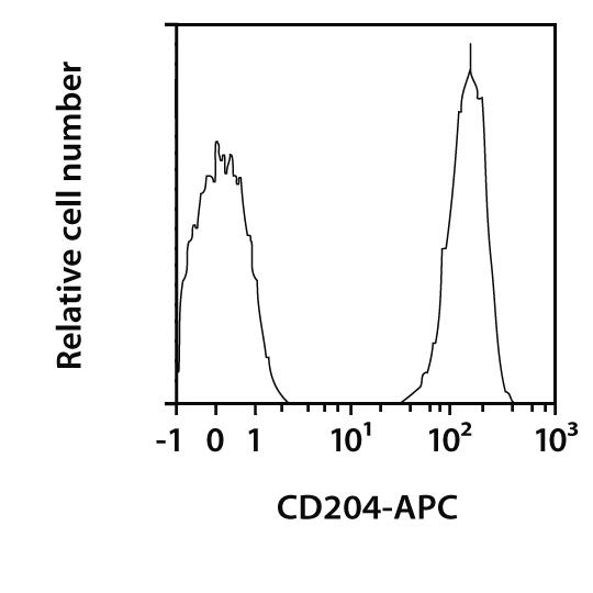 CD204 Antibody, anti-mouse, REAfinity™