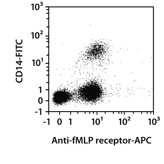 fMLP receptor Antibody, anti-human, REAfinity™