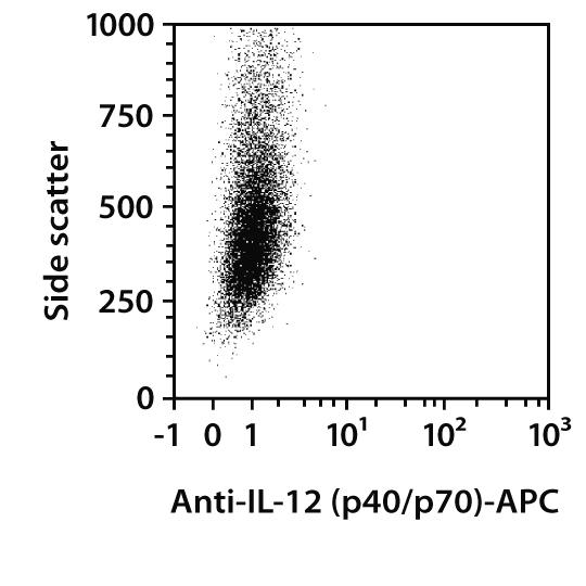 IL-12 (p40/p70) Antibody, anti-mouse, REAfinity™
