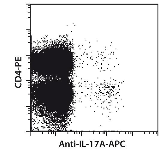 IL-17A Antibody, anti-mouse