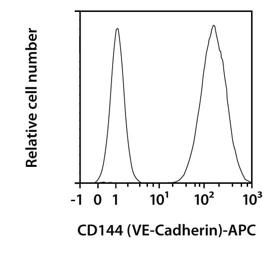 CD144(VE-Cadherin) Antibody, anti-human, REAfinity™
