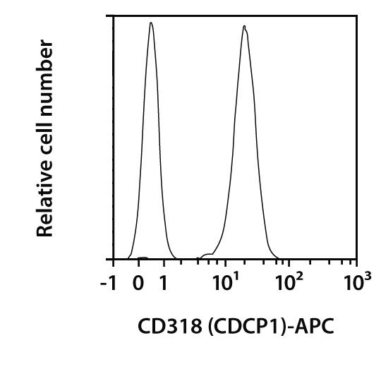 CD318 (CDCP1) Antibody, anti-human, REAfinity™