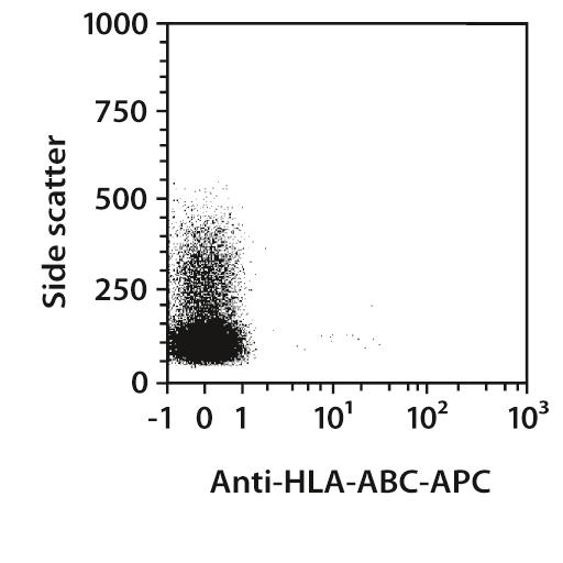 HLA-ABC Antibody, anti-human, REAfinity™