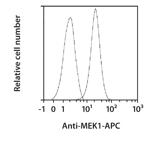 MEK1 Antibody, anti-human/mouse, REAfinity™