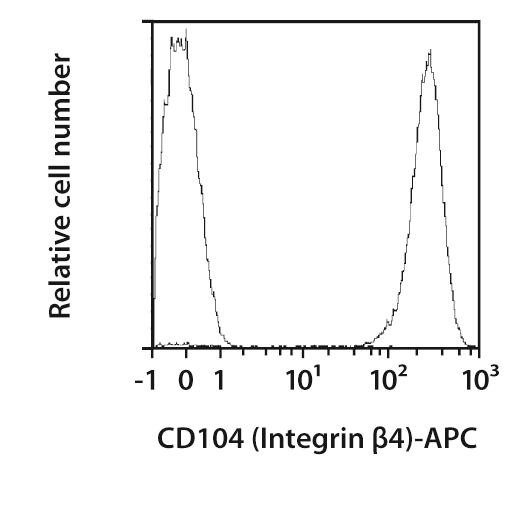 CD104 (Integrin β4) Antibody, anti-human, REAfinity™