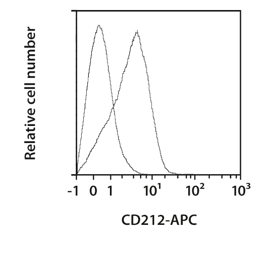 CD212 Antibody, anti-human, REAfinity™