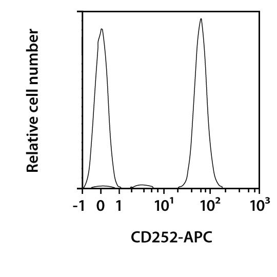 CD252 (OX40L) Antibody, anti-rat