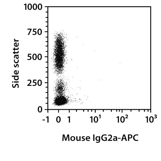 CD99 Antibody, anti-human