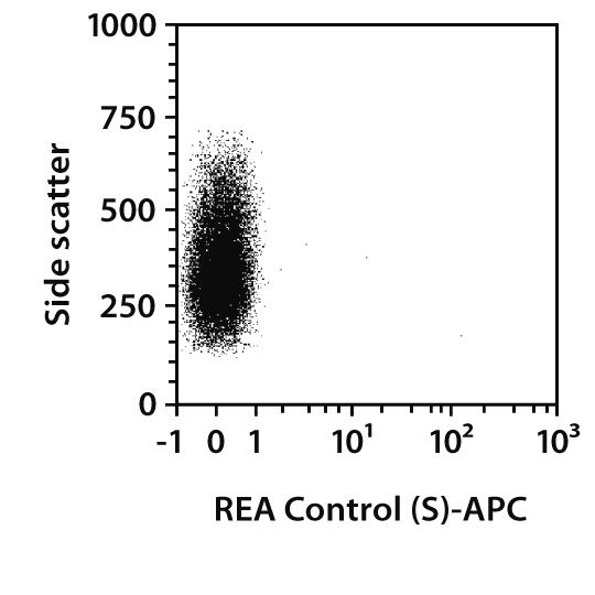 CLIP Antibody, anti-human, REAfinity™