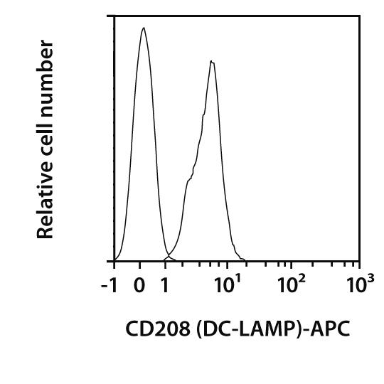 CD208 (DC-LAMP) Antibody, anti-human, REAfinity™