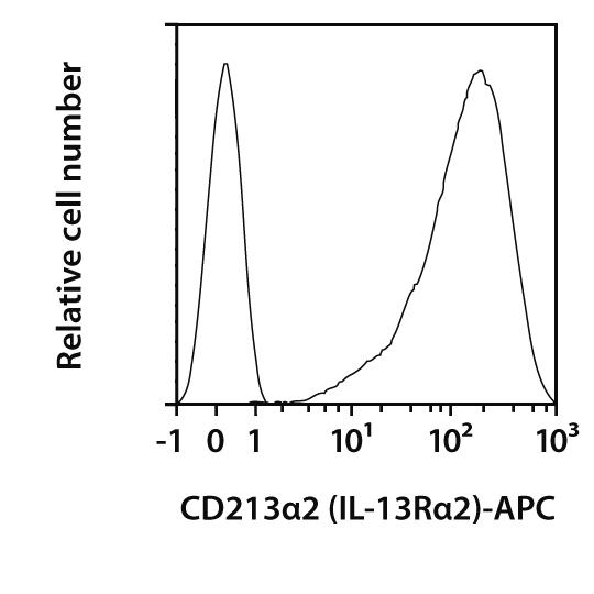 CD213α2 (IL-13Rα2) Antibody, anti-human, REAfinity™