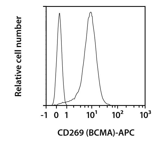 CD269 (BCMA) Antibody, anti-human, REAfinity™
